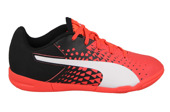 KINDER SCHUHE PUMA evoSPEED SALA GRAPHIC 103779 01